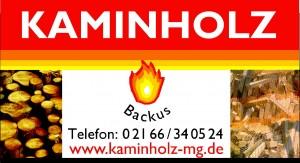 logo-backus
